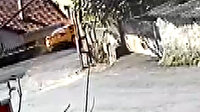 Sarıyer'de kontrolden çıkan ticari taksi evin bahçesine daldı