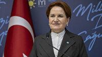Akşener'den 'HDP ile anayasa yaptık' diyen Kaboğlu için yorum: Sevdiğimi söyleyemem