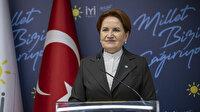 """Akşener """"HDP ile anayasa yaptık"""" diyen Kaboğlu hakkında konuştu: Sevdiğimi söyleyemeyeceğim"""