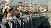 Galata'da balık sevdası: Ne koronavirüs, ne soğuk dinliyorlar