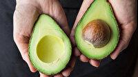 Günde bir avokado tüketmek bağırsaklarda yararlı bakterileri besliyor