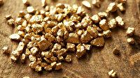 Tarım Kredi iştiraki Gübretaş: Maden sahasında 3,5 milyon onsluk altın varlığı tespit edildi