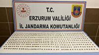 Erzurum'da 439 adet sikke ele geçirildi