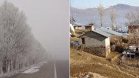 Muş'ta iki mevsim birden: Dağda ilkbahar ovada kış yaşanıyor