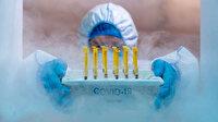 Pfizer/BioNTech aşısını taşımak için yolcu uçağını devasa bir dondurucuya dönüştürdüler