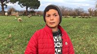 12 yaşındaki küçük çoban sosyal medyanın yeni fenomeni oldu