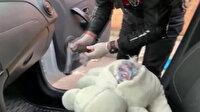 Polis ekipleri oyuncak ayının içerisine saklanmış ruhsatsız tabanca ele geçirdi