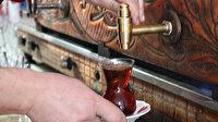 Avrupalılar Türk çayını çok sevdi
