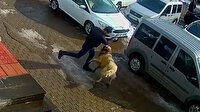 Bitlis'te kendisine saldıran köpeği yumruklayarak kurtulan adam kamerada