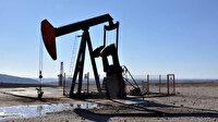 Diyarbakır'daki petrol arama sahası için iki yıllık uzatma