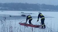 Polonya'da avcılardan kaçan geyik sürüsü göle düştü