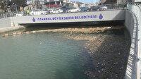 Kurbağalıdere çöplüğü: Kadıköy pislik içinde, vatandaş 'bezdik artık' diyor