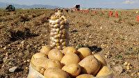 Tohumluk üretim hakkı satış ihalesi