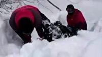 Kartepe'de 20 metre yükseklikten düştüğü ormanlık alanda mahsur kalan turisti JAK timleri kurtardı