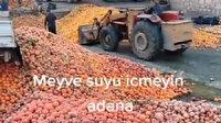 Çürümüş meyveler kepçeyle tesislere taşındı: Meyve suyu olup sofralara gelecekmiş