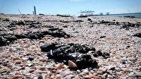 Akdeniz'de petrol sızıntısı: İsrail plajlarını kapattı