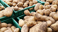 Şubatta en fazla fiyat düşüşü patateste en fazla fiyat artışı sivri biberde oldu
