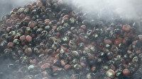 Düzce'de sebze ve meyve halinde yangın: Bir ton soğan zarar gördü