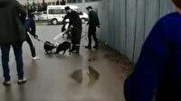 Sultanbeyli'de pitbull dehşeti: Sokak köpeği güçlükle kurtarıldı