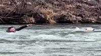Köpeği kurtarmak için buz gibi suya girdi