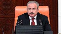 Şentop'tan Gergerlioğlu açıklaması: Meclis'i eylem alanı olarak kullanmaya kalkması kabul edilemez