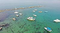 Marmara Denizi'nde sular çekilince ortaya çıktı: İki bin yıllık geçmişi var!