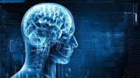 Kanada'da beyni çürüten ölümcül bir hastalık patlak verdi: Belirtileri hafıza kaybı, halüsinasyon
