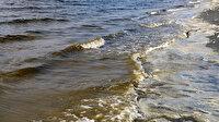 Yeşil alg patlaması Burdur Gölü'nün rengini değiştirdi