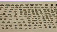 Denizli'de salça kutusundan 296 parça tarihi eser çıktı
