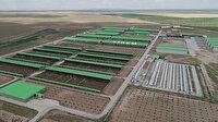 Boztepe Tarım İşletme Müdürlüğü üretim tesislerini 5 yıllığına kiraya veriyor