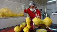 Adana'nın limon dondurması Maraş dondurmasına rakip oldu