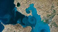 Van Gölü'ne fotoğrafına oy yağmuru: NASA'nın sitesi çöktü