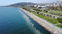 Kartal sahilini deniz salyası sardı: Vatandaşlar endişeli