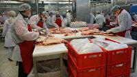 Gıdada taklit ve tağşiş yapan işletmelere kötü haber: Yıllık gayrisafi gelirlerinin yüzde 1'i kadar ceza verilecek