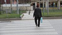 Erzurum'da bir garip yaya geçidi: Başı var sonu yok