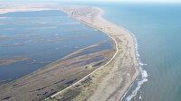 Kızılırmak Deltası küçülüyor: Uzmanlar acil önlem çağrısı yaptı