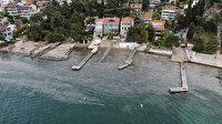Balıkçıların kâbusu şimdi de Büyükada'yı sardı: Deniz canlıları için büyük tehlike