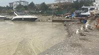 Caddebostan ve Fenerbahçe sahillerini deniz salyaları sardı
