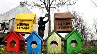 Konya'da belediye minik dostlarını unutmadı: Şehrin dört bir yanına kuş evleri monte edildi