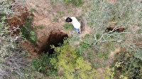 Sultangazi'de ormanda şaşkına çeviren görüntü: İçine girsem kimse beni bulamaz
