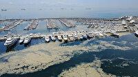 Deniz salyası Pendik Marina'yı beyaza boyadı