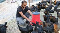 Devlet 4 kardeşe destek verdi: Tavuk çiftliği kurup iş sahibi oldular