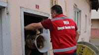 Rahatsızlanan köpeği Vefa Sosyal Destek Grubu ekipleri hastaneye götürdü