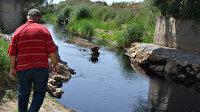 Alaşehir Çayı'nda korkutan görüntü: Siyaha büründü zehir akıyor