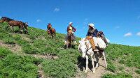 Yüksek rakımlı dağlarda zorlu yolculuk