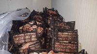 Zabıta ekiplerinin durdurduğu araçtan iki ton kaçak et çıktı