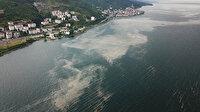 Temizlenmişti: Deniz salyası İzmit Körfezi'ne geri döndü