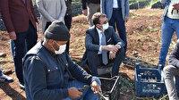 Mardin Derik kaymakamı Aytemür'ün hedefi 1 milyon zeytin ağacı
