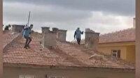Ankara'da bir binanın çatısında mahsur kalan köpeği itfaiye ekipleri kurtardı