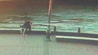 Eminönü'ndeki dehşet: Yumruklayıp denize attığı kişi öldü